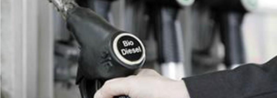 En riesgo que Pemex deje a trasnacionales la producción de diésel limpio