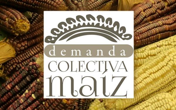 LogoDCM