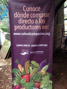 Pendón con la leyenda Conoce dónde comprar directo a los productores en www.valoralcampesino.org