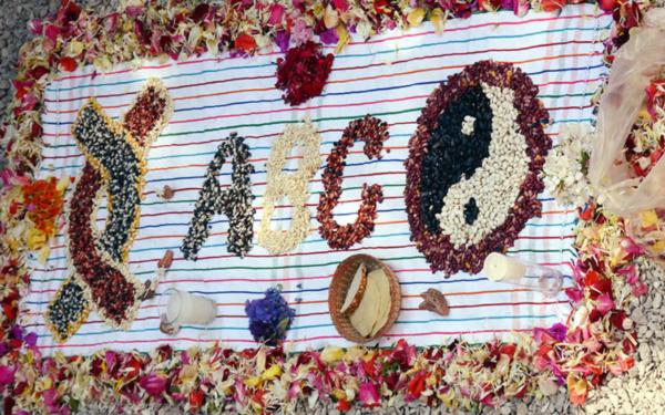 Arreglo con flores y semillas de la Red Agricultura del Bien Común (Red ABC) en la presentación de su sello Aval de Confianza