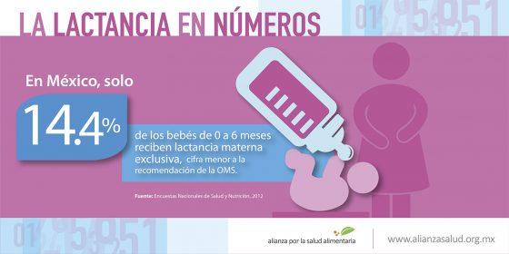 La lactancia en números: En México sólo el 14.4% de bebés de 0 a 6 meses reciben lactancia materna exclusiva