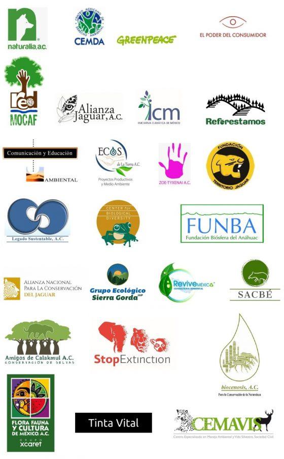 Logos de organizaciones firmantes de este pronunciamiento
