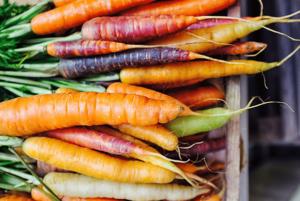 Zanahorias en distintos tonos