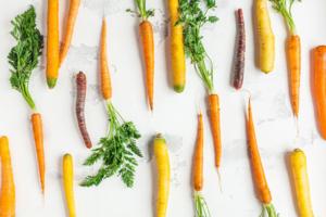 Zanahorias en distintos tonos y formas