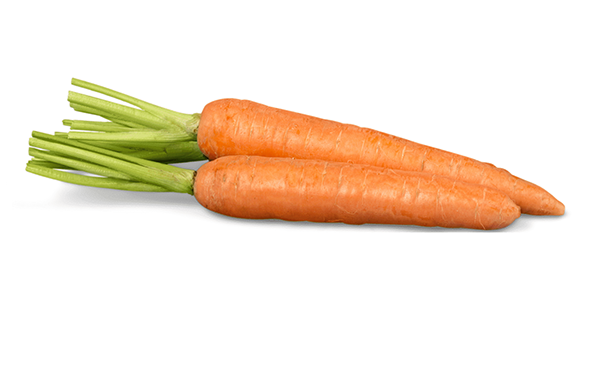 Un par de zanahorias lavadas